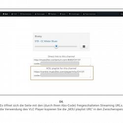 VLC Player Screenshot 4