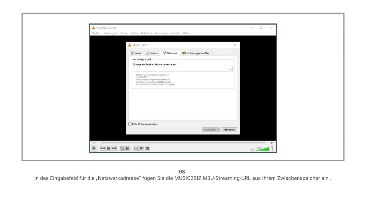 VLC Player Screenshot 8
