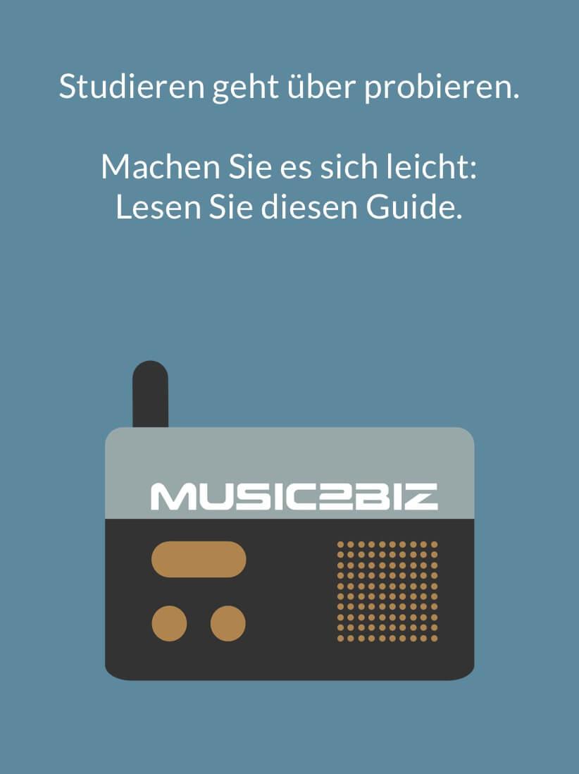 Titelseite fuer guides VLC Player DE